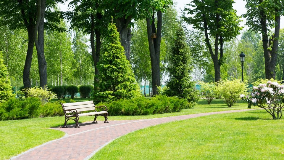 آسيا - حدائق الملك الحسين: حدائق مليئة بالمميزات