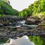 النهر الأسود: منتزه خيالي في موريشيوس