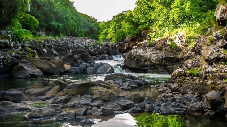 أفريقيا - النهر الأسود: منتزه خيالي في موريشيوس