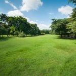 حديقة كولنشير برلين أجمل حدائق ألمانيا