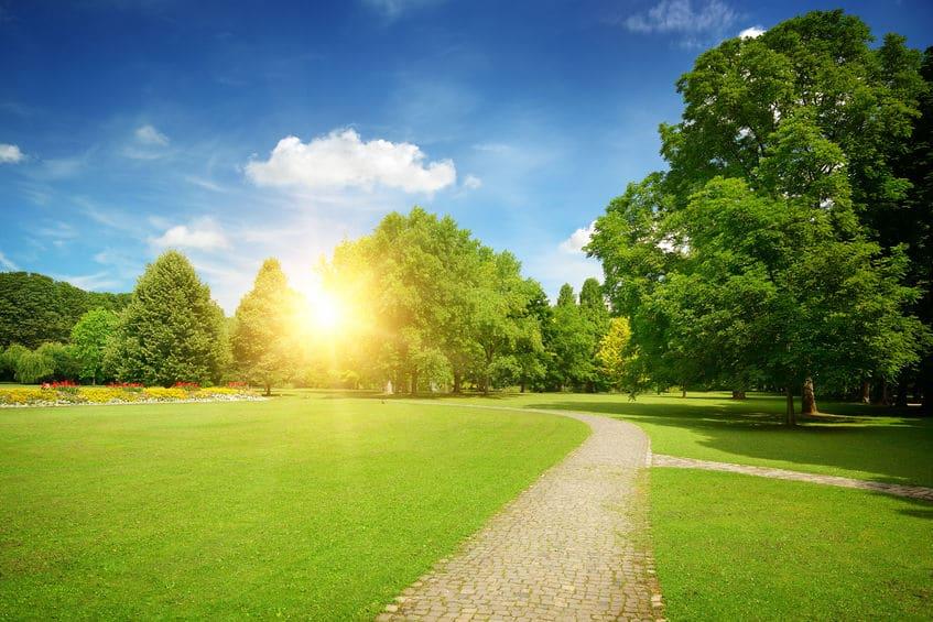 شيفشينكو: منتزه عالمي في أوديسا » دليل سفر