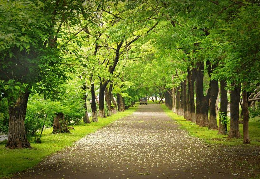 إستونيا - منتزه كادريورغ: المنتزه الأكبر والأهم في إستونيا