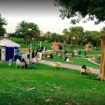 حديقة السلام