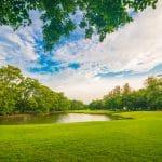 حديقة سكونا: أهم حدائق فيجي والمحيط الهادئ