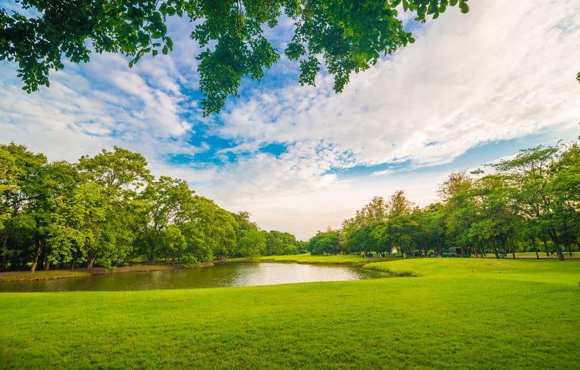 المحيط الهادئ - حديقة سكونا: أهم حدائق فيجي والمحيط الهادئ