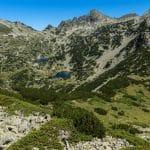 حديقة بيرين الوطنية: أهم الحدائق الموجودة في بلغاريا