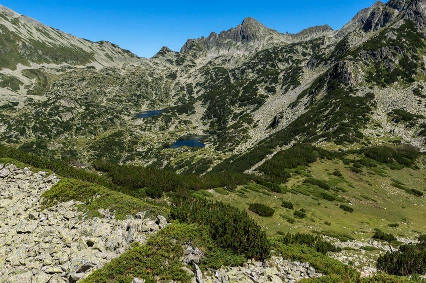 بلغاريا - حديقة بيرين الوطنية: أهم الحدائق الموجودة في بلغاريا