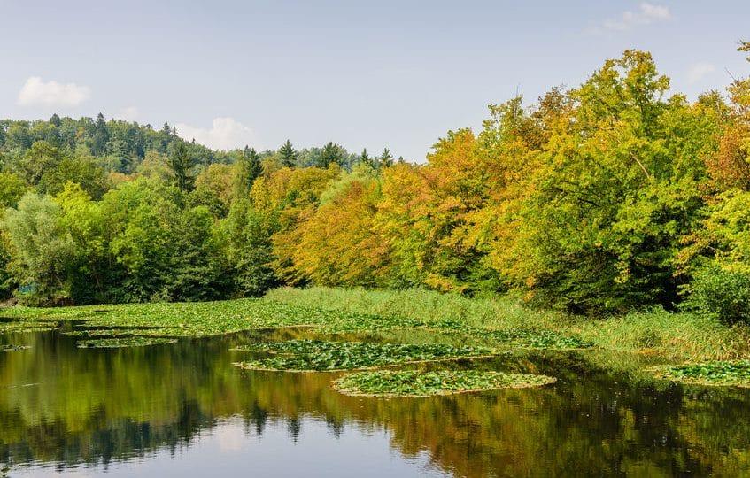 سلوفينيا - حديقة تيفولي