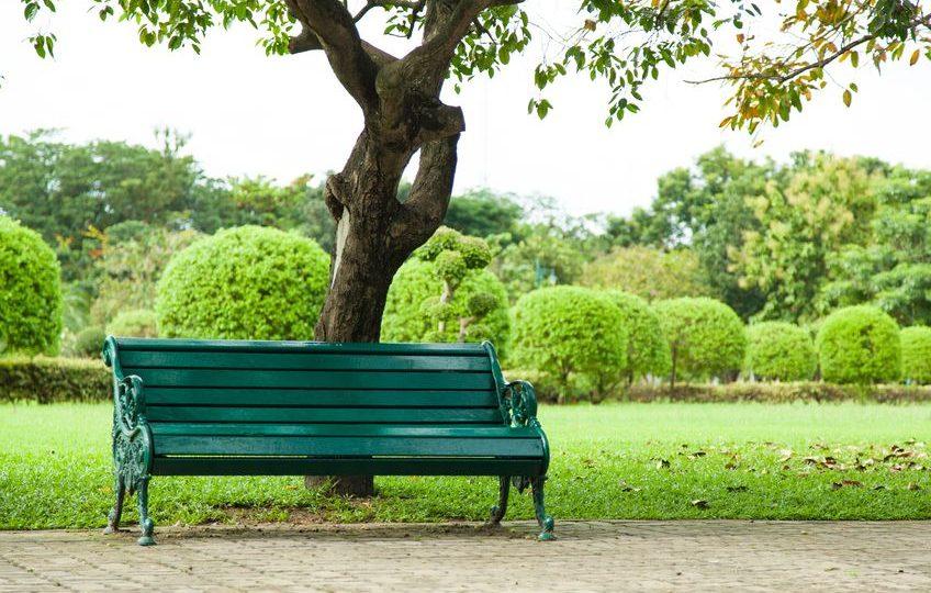 قبرص - حديقة الجمال: حديقة فريدة من نوعها