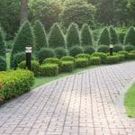 حديقة رينيه معوض: أفضل وأهم مساحة خضراء في لبنان