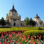 سيتي بارك: الحديقة الأعظم في هنغاريا