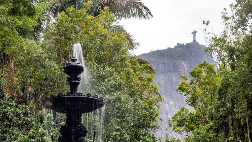 حديقة ريو دي جانيرو النباتية